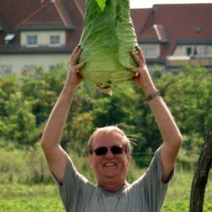 Gärtner mit Spitzkohl