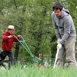 Vorsicht: Gartenarbeitstage für nächste Woche wieder geändert!