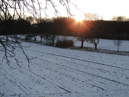 Wintereindruck Havelmathen Abendsonne