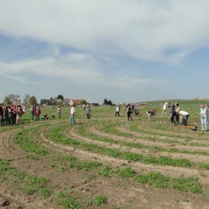 BIO Magazin: Urban Farming