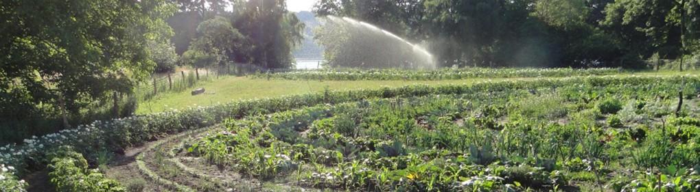 Gartenkreise mit Havelblick