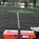Bauerngarten im November - plattgemacht