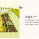 Havelmathen: Der neue Nachbar