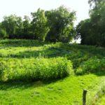 Havelmathen Garten mit Havelblick