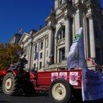 Bauerngärtner*innen gegen die Agrarindustrie